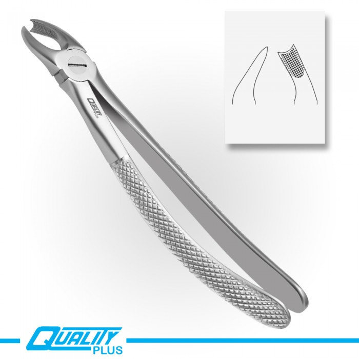 Fig: 89 Extraction Forceps English Pattern Serration